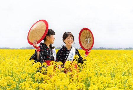三川町の魅力を投稿しよう!菜の花写真コンテストにSNS部門が初開催